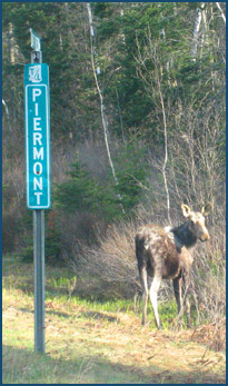 moose-and-Piermont-sign